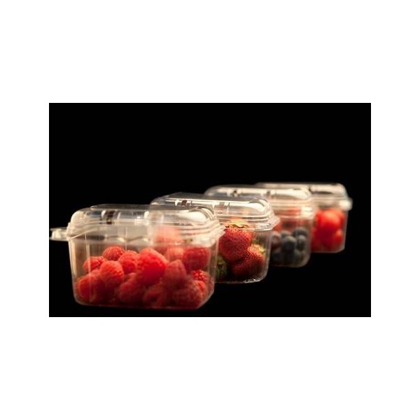 Caserole fructe cu capac 500cc H91 (100buc)